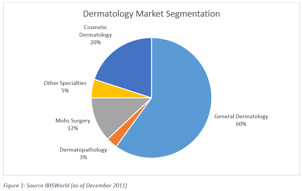 dermatology_segment-1000x630